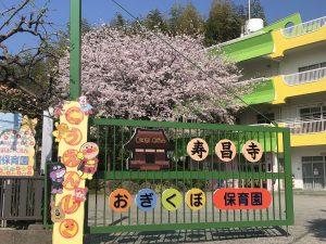桜の木園舎